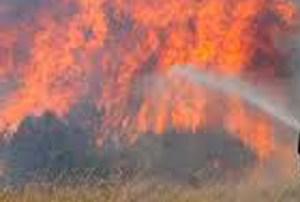 Vasto incendio tra Fresagrandinaria e Dogliola, in azione anche i canadair da Roma
