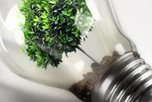 Posto in azienda settore ambiente-ecologia