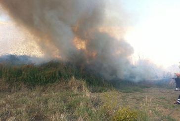 Ecco la carta contro gli incendi boschivi
