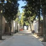 cimitero S. Salvo_4