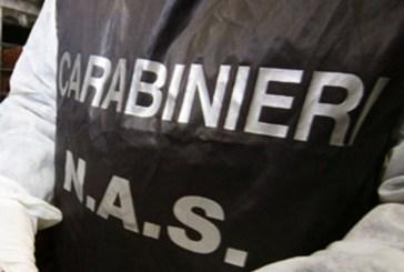 Carabinieri sequestrano tre quintali di alimenti fra cui cibi dietetici e latte per neonati
