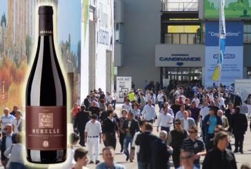 Vinitaly 2014: ottimi risultati per il vino abruzzese