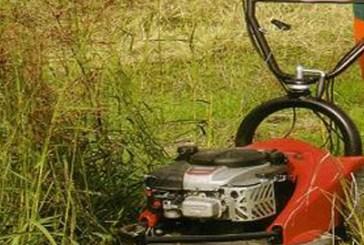 San Salvo: il Comune ripulirà gli spazi esterni delle scuole di proprietà della Provincia di Chieti