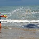 capodogli spiaggiati-punta penna - 154