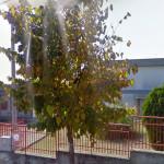 la scuola Ripalta