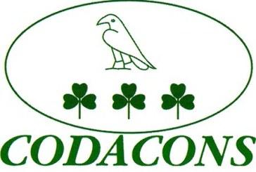 Codacons: 324 euro in meno nelle tasche delle famiglie