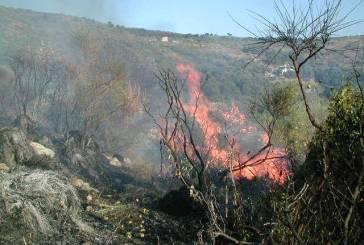 Incendi dolosi a Lentella a distanza di pochi giorni