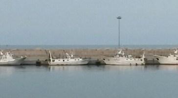Scattato il fermo pesca da Pesaro a Bari, resterà in vigore fino al 27 settembre