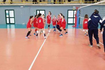 Continua il successo della Team Volley 3.0