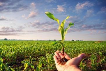 Abruzzo, 1,9 milioni per la formazione dei giovani agricoltori ed imprenditori agricoli e forestali