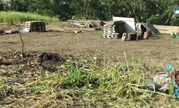 Punta Penna, scavi vietati nella zona archeologica