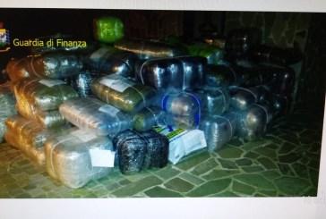 Maxi operazione della Guardia di Finanza, sequestrate quasi due tonnellate di marijuana