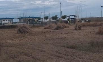 Vasto, aperte due inchieste sulle dune livellate