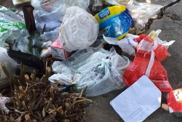 Abbandono dei rifiuti, individuati i reponsabili