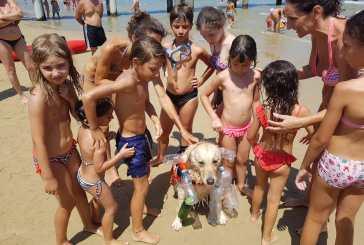Il cane Nebbia in azione: salva bagnanti e pesca la plastica