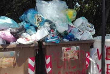 Abbandono dei rifiuti e conferimento non corretto, ecco le prime sanzioni