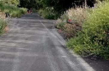 Erbacce e tracce di auto, la pista ciclopedonale della Via Verde terra di nessuno