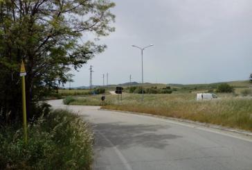 L'erba alta nasconde la visuale, insorge il Comitato ProTrignina