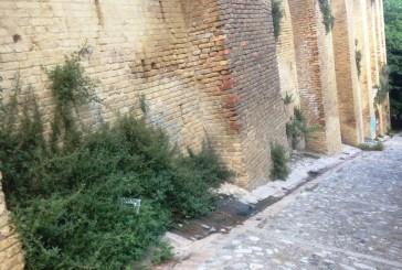 Loggia Amblingh: perdita di acqua sotto le arcate del muro, pericoli di dissesto?