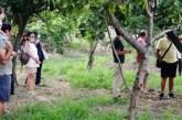 A spasso tra orti e aranceti per riscoprire le tradizioni