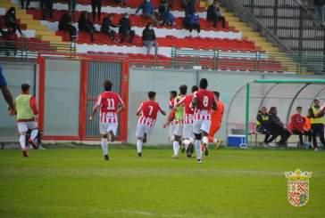 Calcio, rinviata la sfida Castelfidardo-Vastese