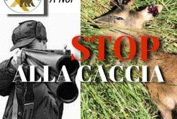 Stop alla caccia, Anna Rita Carugno lancia il referendum