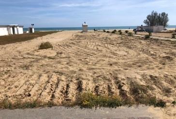 Pulizia spiaggia, Taglioli: difficile conciliare le esigenze naturalistiche con quelle degli stabilimenti balneari