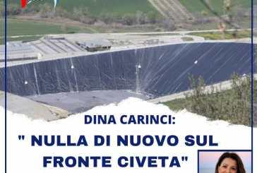 Dina Carinci: