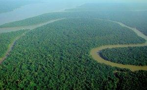 Image courtesy of Wikipedia, https://en.wikipedia.org/wiki/Amazon_River