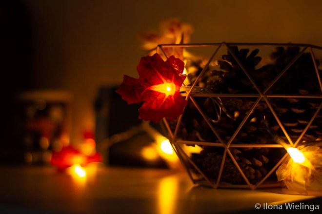 lampjes 1 denneappels diy herfst