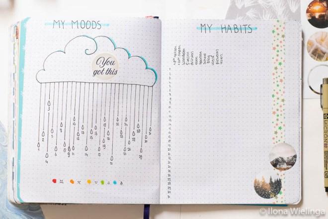 bullet journal set-up januari 2020 mood tracket habit tracker