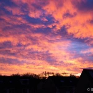zonsopkomst 2 gedicht vrij zijn