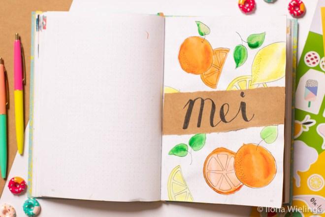 bullet journal mei overzicht fruit