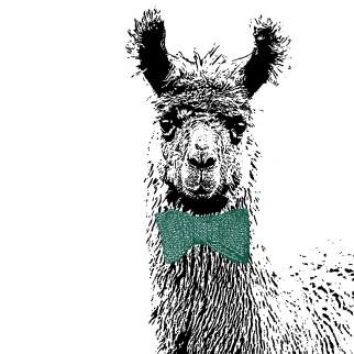 Goed Gekleed serie - Lama