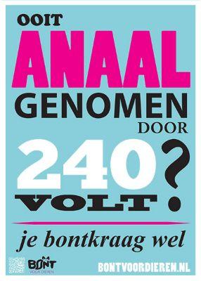 Poster Bont voor Dieren voor Boomerang