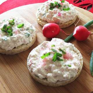 Farmer's Cheese with Radishes and Green Onions