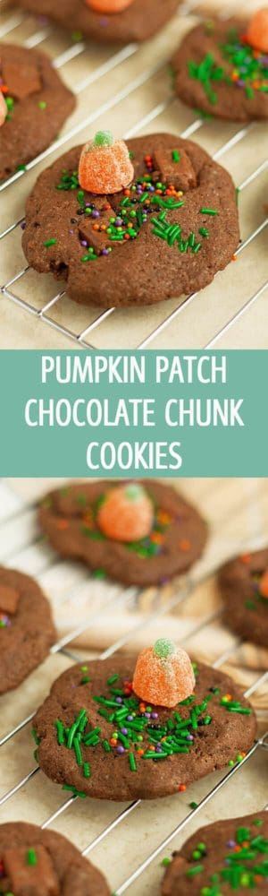 Soft, versatile Pumpkin Patch Chocolate Chunk Cookies recipe great for halloween or any other party! by ilonaspassion.com I @ilonaspassion
