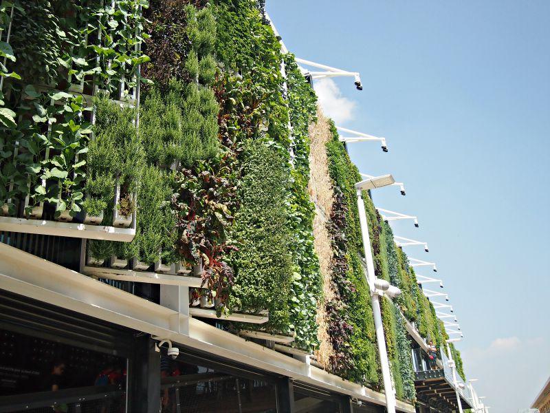 pohyblivá venkovní struktura s rostlinami