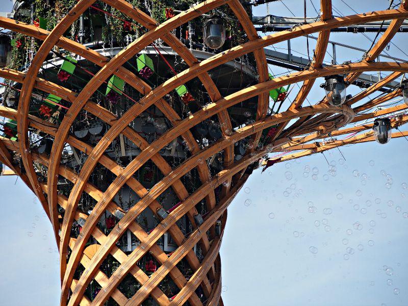 strom života vypouštěl bubliny :-)