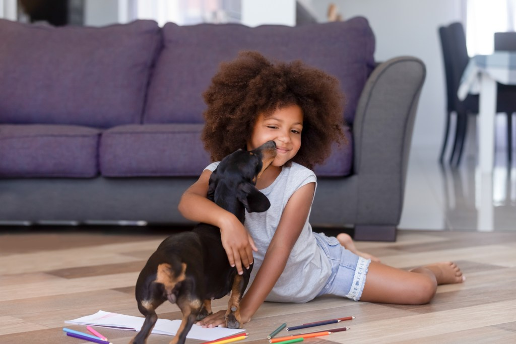 Are Dachshunds Good Family Dogs? Young child sat on the floor being kissed by a dachshund dog