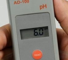 Testing and maintaining pH
