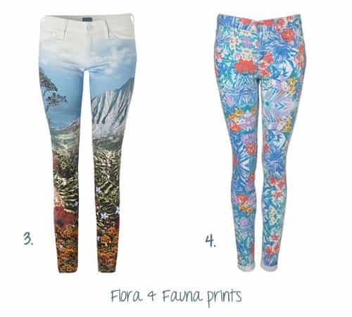 Flora & Fauna 3&4