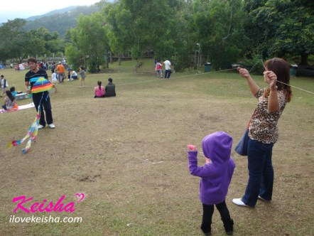 Kite Flying In Picnic Grove Tagaytay