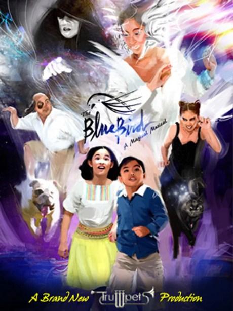 Bluebird Poster Study