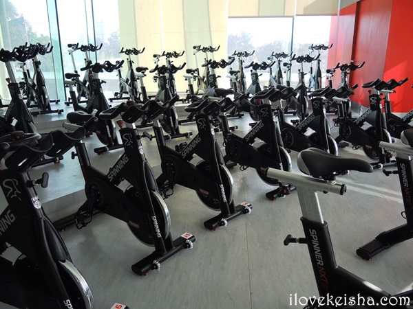 Fitness First Platinum Club Viridian Bike
