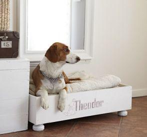 cama para perros con palets