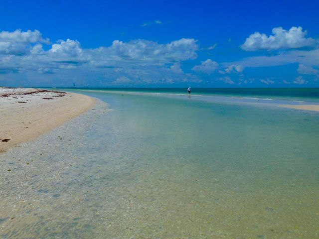 Road Trip To Honeymoon Island Florida – Part 1