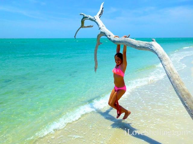 girl in bikini swinging from tree on a tropical beach