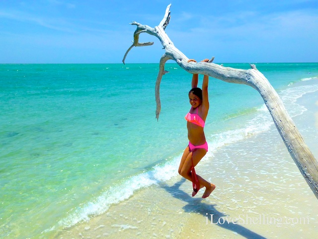 girl in bikini swinging from tree on a tropical beach