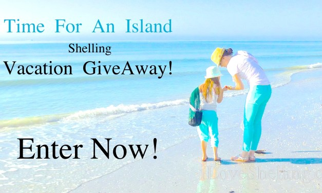 Shelling Vacation Giveaway Package- It's Time for an Island!